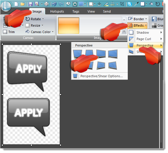 Snagit Perspective Effect