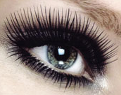 Eyelash Extensions Salons Directory