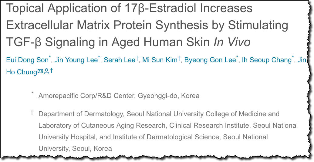 Topical Application of 17β-Estradiol Increases Extracellular Matrix Protein Synthesis by Stimulating TGF-β Signaling in Aged Human Skin In Vivo