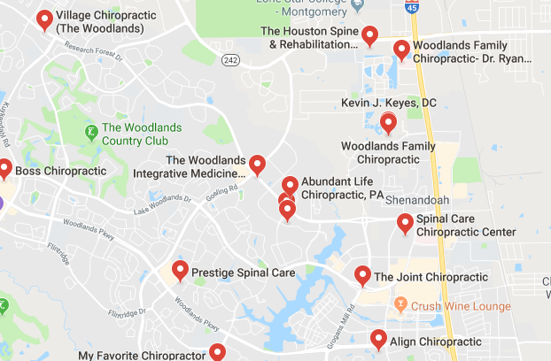 chiropractors and clinics in The Woodlands you can visit.