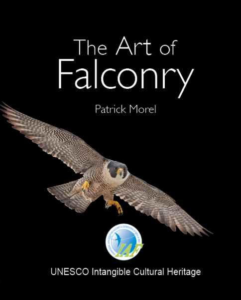 Art of Flaconry link: https://www.freewebstore.org/FalcOnLine/!!!PRE-ORDER!!!_The_Art_Of_Falconry__Special_IAF_Edition__Last_copies/p1596700_15315658.aspx