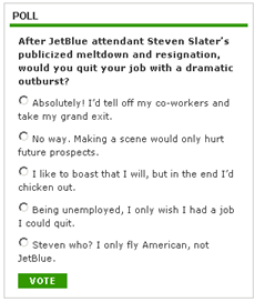 What Does JetBlue Employee Steven Slater's OutburstMean for Disgruntled Workers